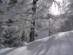 35_winter_wonderland-567x425.jpg